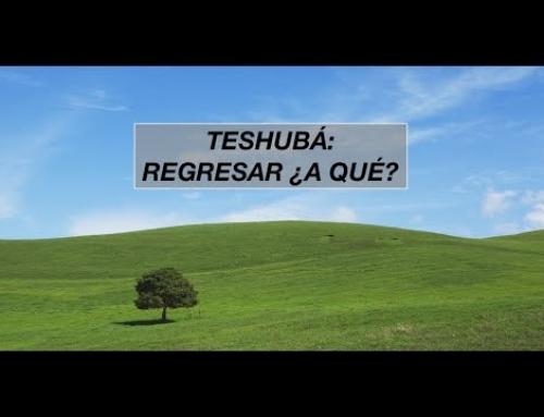 Teshuba quiere decir regresar, pero…  ¿a donde regresamos?